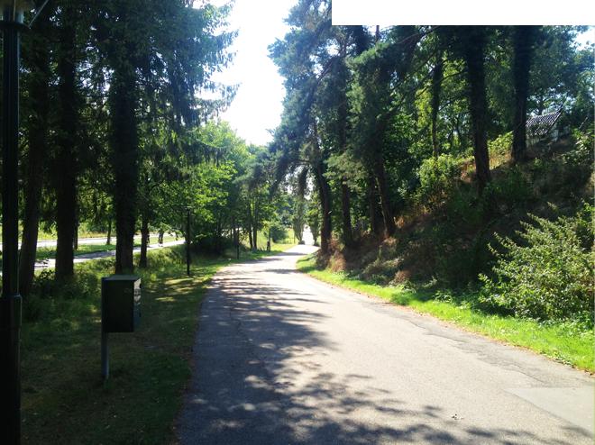 glimt fra ruten her på vej mod 2 km